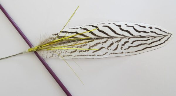 A close up of the feather of the Zig Zag Interactive Cat Toy Teaser