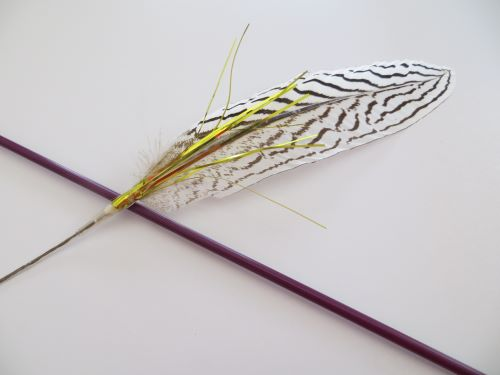 Zig Zag feather teaser cat toy